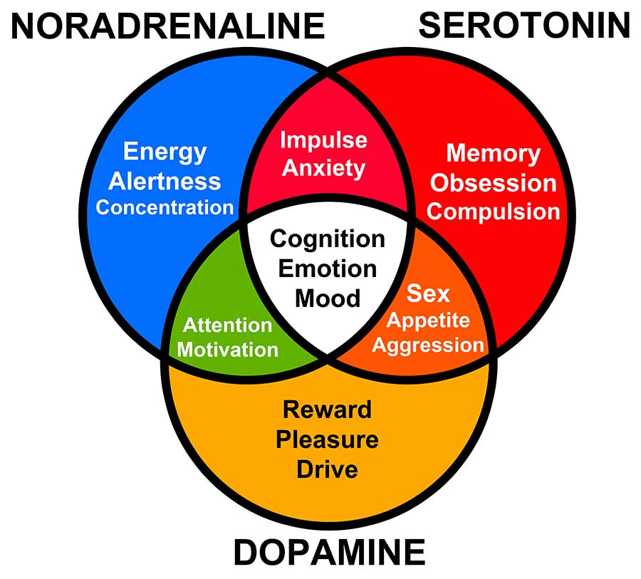 Nicotine and brain neurotransmitters