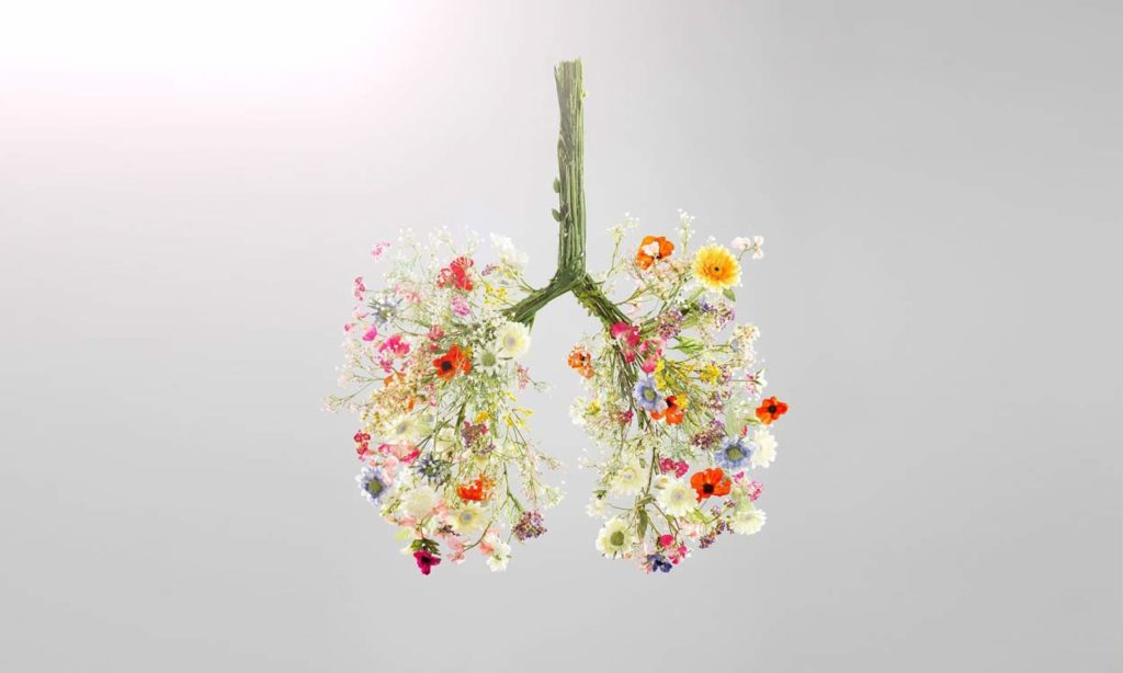 smokers cough lungs flower